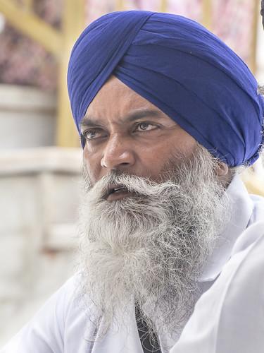 India..Sikhs du khalsa (initiés) Sikhs of the khalsa (initiated) Golden temple Amritsar Look at my album 2013 India
