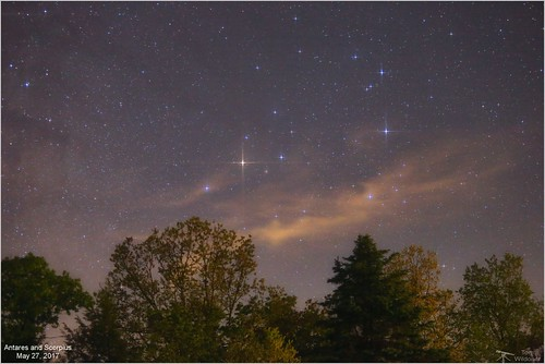 Early Morning Antares and Scorpius