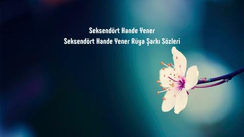 Seksendört Hande Yener Rüya sözleri