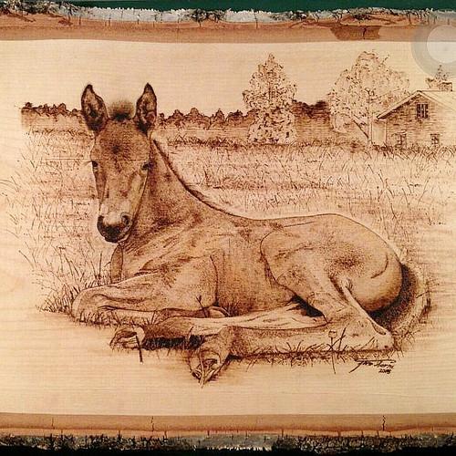 Handmade pyrography foal.