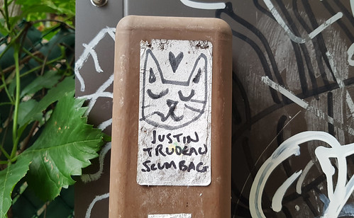 ♡ Justin Trudeau Scumbag