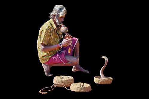 India - Kerala - Varkala - Snake Charmer - 4d