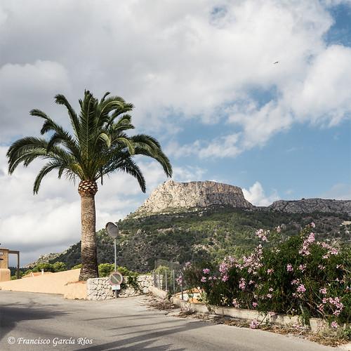 Fantasía mediterránea. / Mediterranean Fantasy.