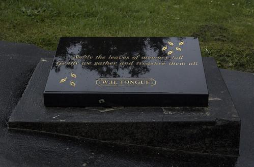 W. H. Tongue Vault