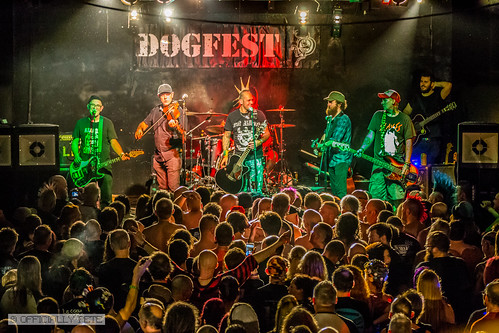 Dogfest 2017
