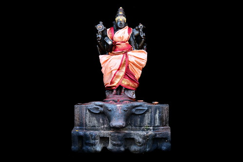 India - Tamil Nadu - Darasuram - Airateswara Temple - Parvati - 1d