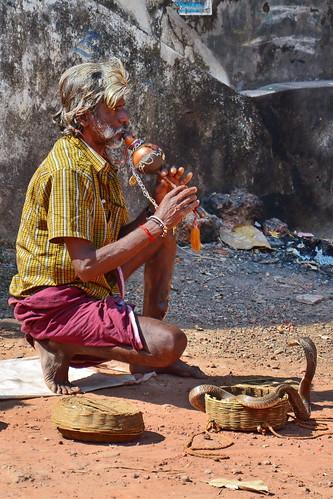 India - Kerala - Varkala - Snake Charmer - 1