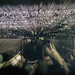U2 - double exposure - lights - Morumbi Stadium/SP - Brazil
