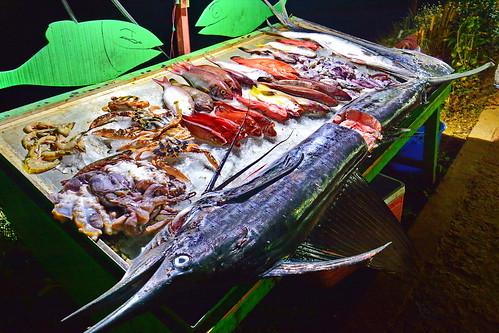 India - Kerala - Varkala - Swordfish - 63