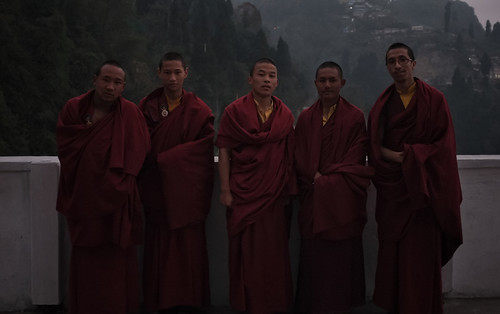 Young Tibetan Monks, Darjeeling