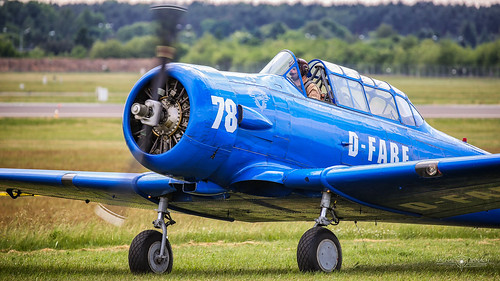 North American T-6 Harvard (D-FABE)