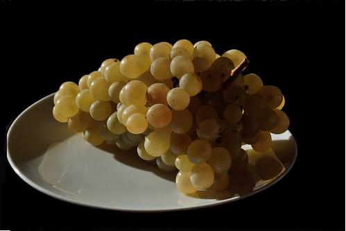DSC_9081_4996 -  Grappolo dorato - Golden grape.