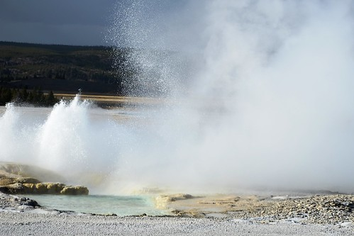 A view of eruptions of Clepsydra and Spasm Geysers from a distance of 150 yards (approx.) on Fountain Paint Pot trail, Yellowstone National Park, Wyoming, USA- 8  [EXPLORED ]