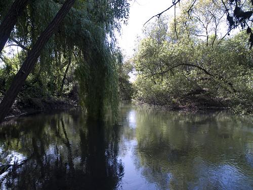 2010-04-24 SR Creek @ Willowside Rd-05