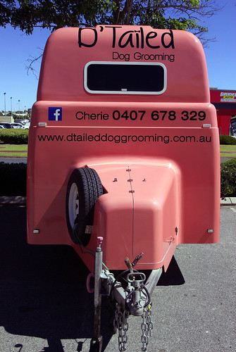 D'Tailed Dog Grooming
