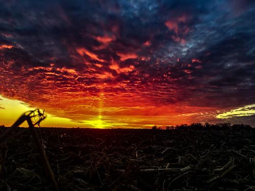 Corn Field Sun Pillar...
