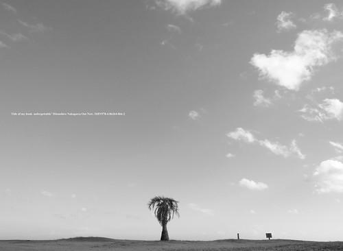 Fuji film GFX50R shot.   Dry landscape.