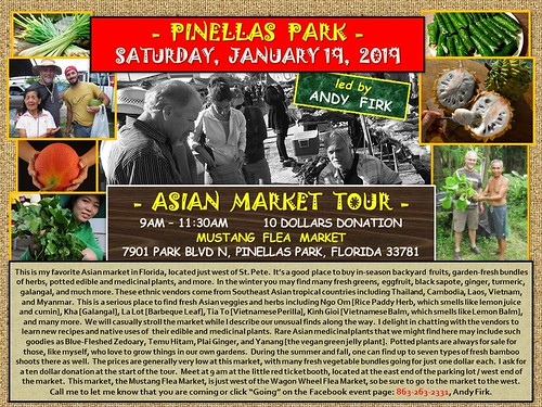 Event Poster: Asian Market Tour with Andy