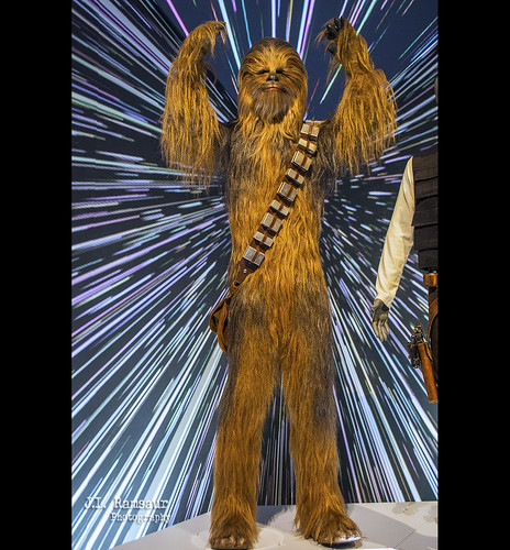 Star Wars & the Power of Costume - Chewbacca