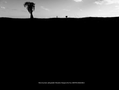 Fuji film GFX50R shot. Beach silhouette.