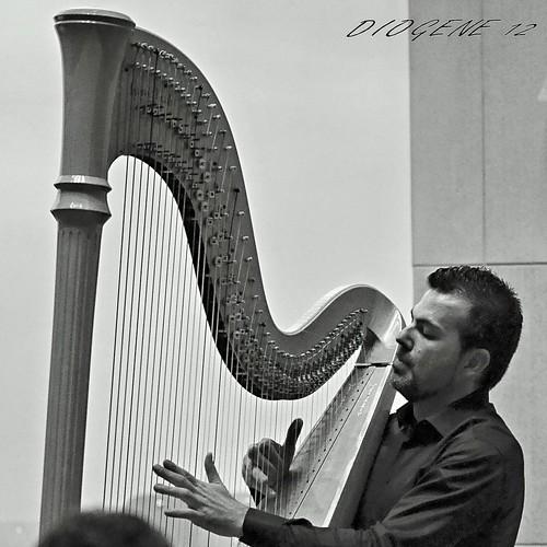 MAESTRO DAVIDE BURANI - arpa