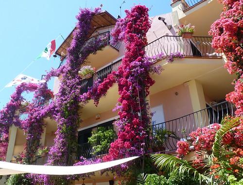 Bari Sardo (Ogliastra) - Un hotel floreale