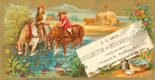 E. C. Davis, Collector of Business Cards, Providence, Rhode Island