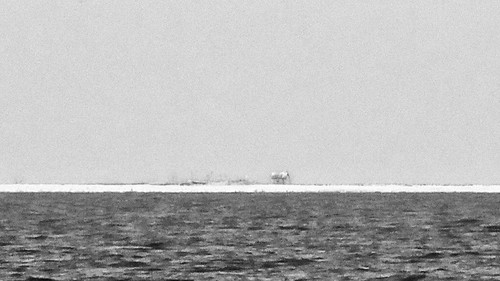 Verso l'Infinito. Isola di Faro (Gotland 2007)   -  20070702_P1050522
