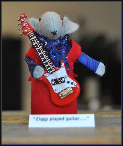 Ziggy..