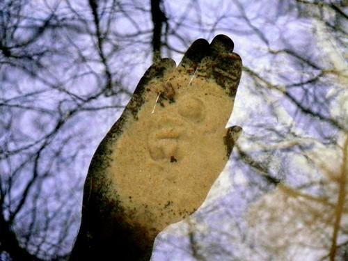 źródło w dnie rzeki Korytnicy w otulinie Drawieńskiego Parku Narodowego