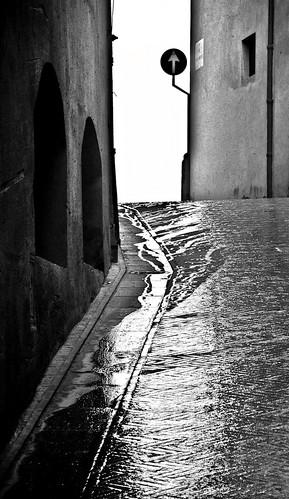 IL SOLO BINARIO / THE ONLY TRACK