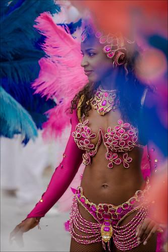 Carnaval do Brasil 2014 Variation2