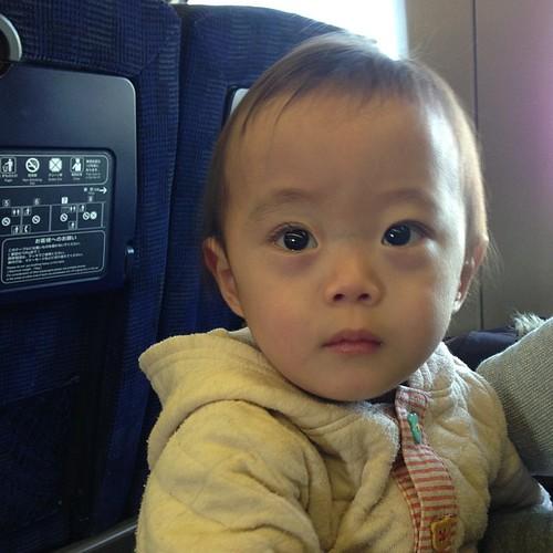 連休で神戸に帰省。新幹線に乗ってなんだか不安そうな3号機。