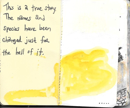 2, Book of Bats by Kelly Nesbitt