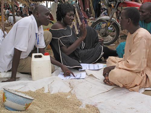 Tchad - Formation Etudes sur la sécurité semencière (ESS) - Travail en binome pour l'enquête-marché local: vendeurs de semences, enquêteur et rapporteur