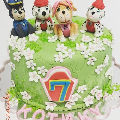 С днём рождения Котик!#cakeorder (786)327-9172#cakedesign #cakeart #happybirthday #happy #happybirthdaytoyou #cakes #cakedog#