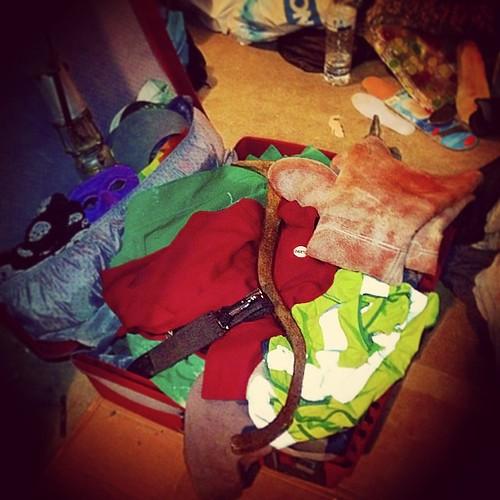 Ma valise des catas