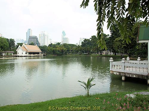 Large Lake in Lumphini Park in 2013, Pathumwan District, Bangkok, Thailand.