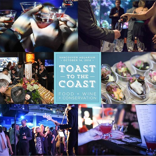 Less than a week now until @vanaqua's #TTTC16 on October 14. Do you have your tickets yet? Join us! Don't miss out on this amazing evening filled with gourmet sustainable @ocean_wise food, wine, cocktails, live music, dancing and so much more. It's our 10