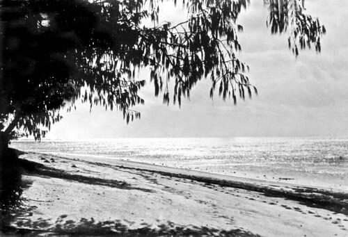 Sunset on Green Island, near Cairns, c 1931