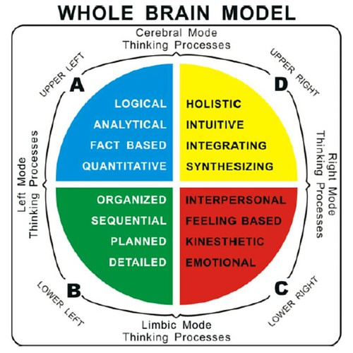 #HBDI #WholeBrain Model. The anti #myersbriggs. The brain is more than #LeftBrainRightBrain. @nbmbaahq @KYNBMBAA   Learn your leading style (and even how you handle stress) with HBDI.  #CareerCoaching #CareerPathing