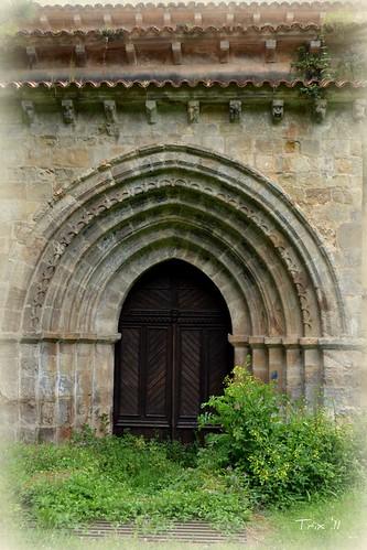 Entre la hierba de San Antolín de Bedón (Naves, Llanes) Asturias