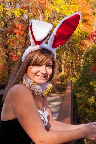 The Tea Party Bunny