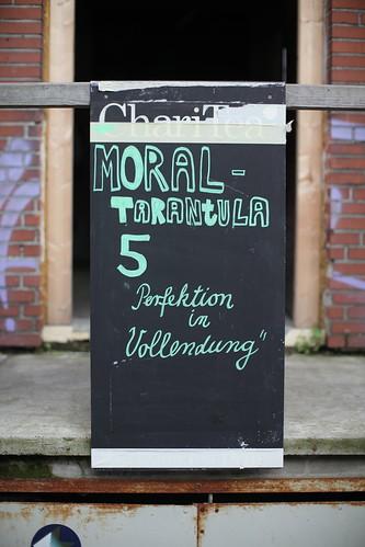 Moraltarantula #5 - Perfektion in Vollendung