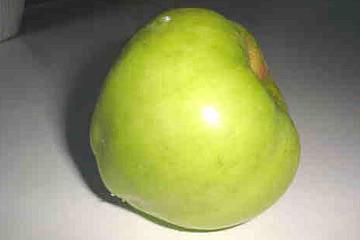 Tyrrestrup Æblet