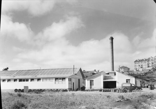 Fábrica de tintas Atlântica, Pedralvas (Mário de Novais, s.d.)