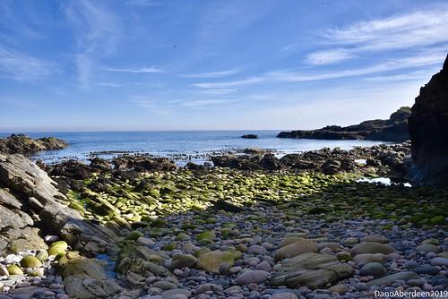 Cove Bay - Aberdeen Scotland -  14th May 2019