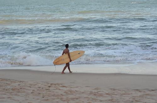 Olhei pro mar e vi uma onda solitária correndo sem quebrar