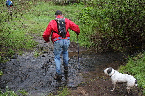 David crosses Jackson Creek while Arlie supervises