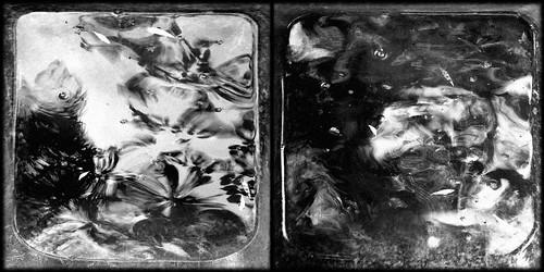 In The Dreams Of 'Bosch' #2 (Secret Gardens #14)